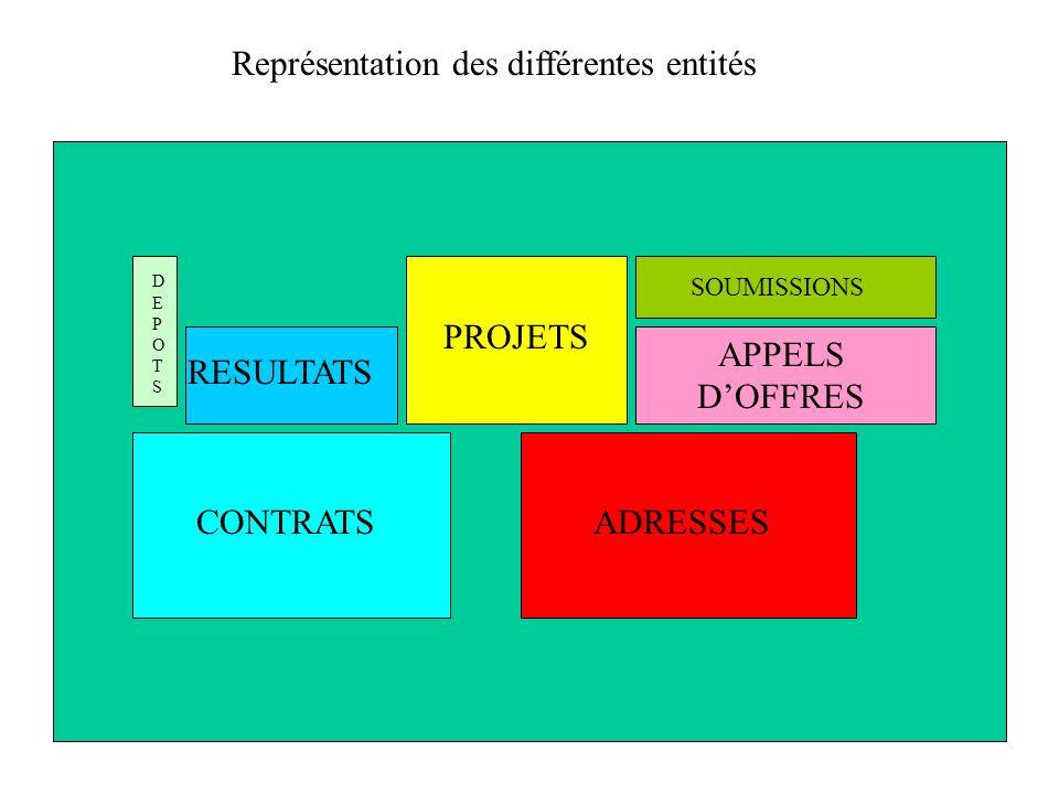 ADRESSESCONTRATS RESULTATS PROJETS APPELS DOFFRES SOUMISSIONS DEPOTSDEPOTS Représentation des différentes entités