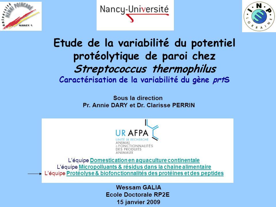 Etude de la variabilité du potentiel protéolytique de paroi chez Streptococcus thermophilus Caractérisation de la variabilité du gène prtS Sous la dir
