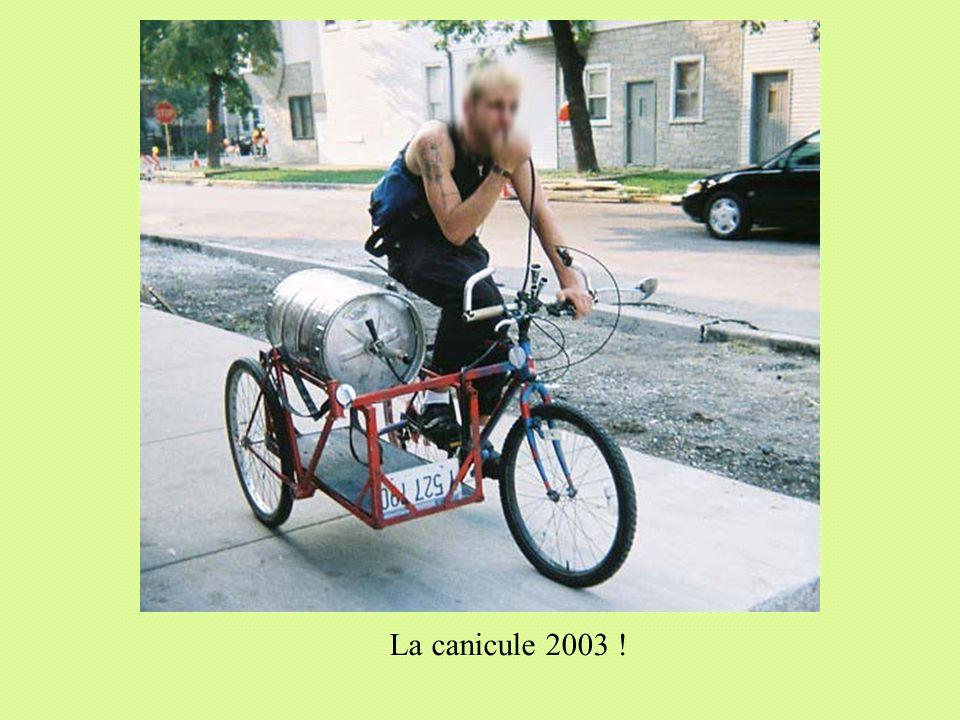 La canicule 2003 !