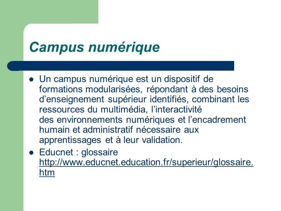 Campus numérique Un campus numérique est un dispositif de formations modularisées, répondant à des besoins denseignement supérieur identifiés, combina