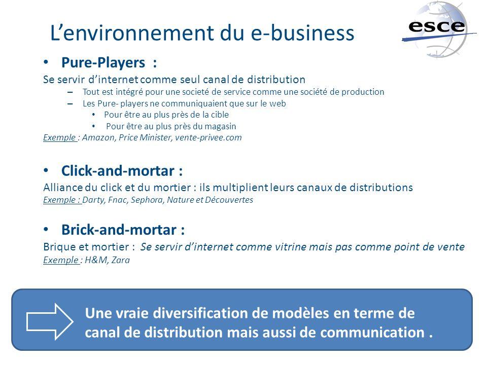 Lenvironnement du e-business Pure-Players : Se servir dinternet comme seul canal de distribution – Tout est intégré pour une societé de service comme