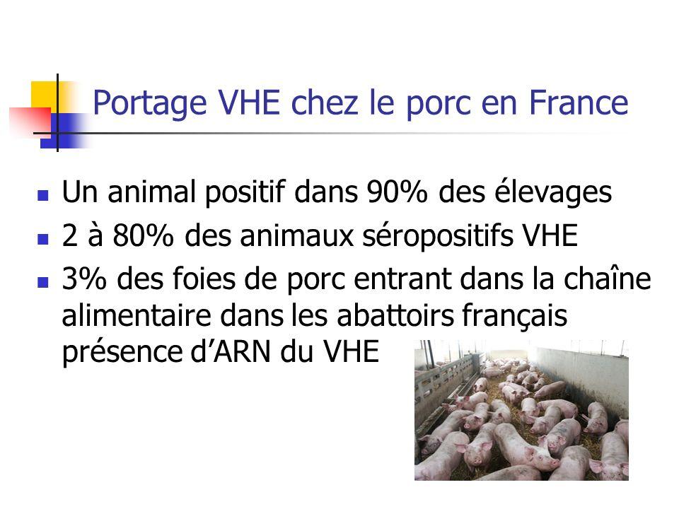 Portage VHE chez le porc en France Un animal positif dans 90% des élevages 2 à 80% des animaux séropositifs VHE 3% des foies de porc entrant dans la c
