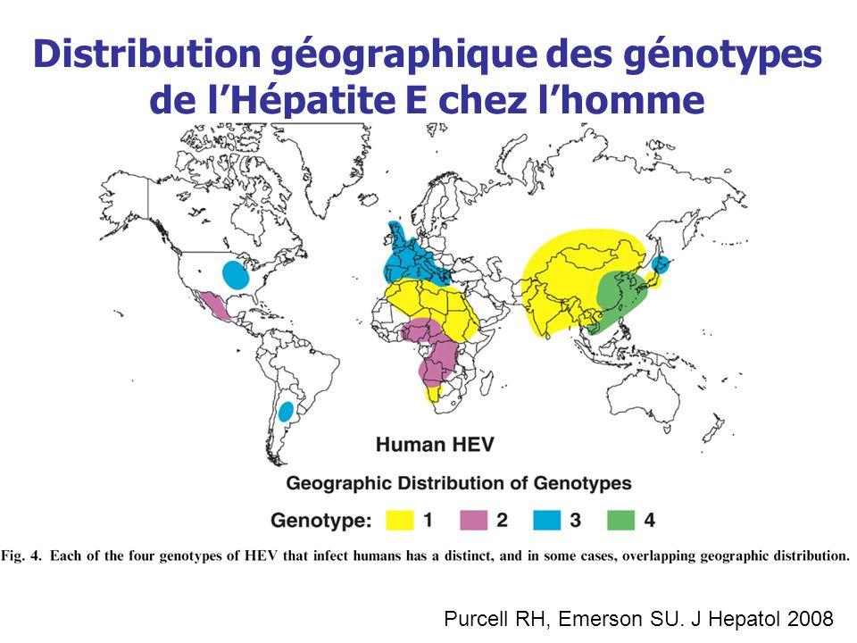 Distribution géographique des génotypes de lHépatite E chez lhomme Purcell RH, Emerson SU. J Hepatol 2008