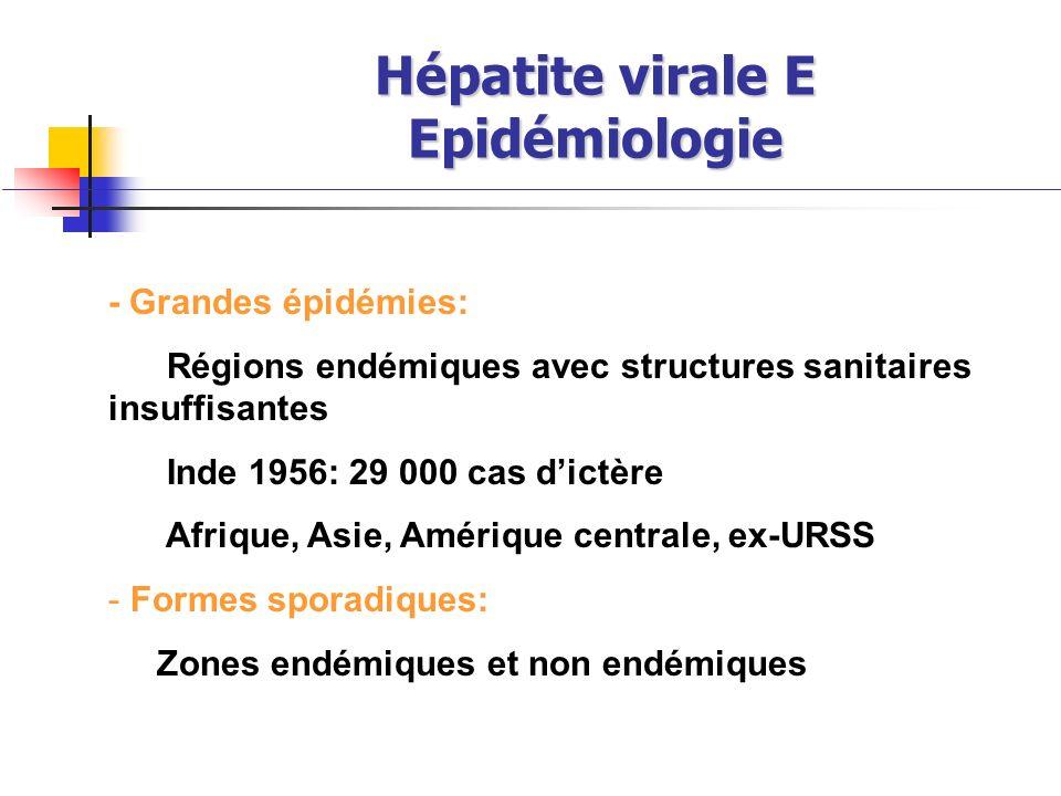 Hépatite virale E Epidémiologie - Grandes épidémies: Régions endémiques avec structures sanitaires insuffisantes Inde 1956: 29 000 cas dictère Afrique