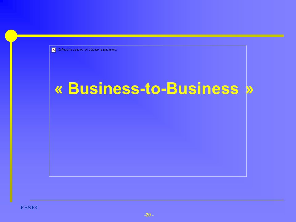 -20 - ESSEC « Business-to-Business »