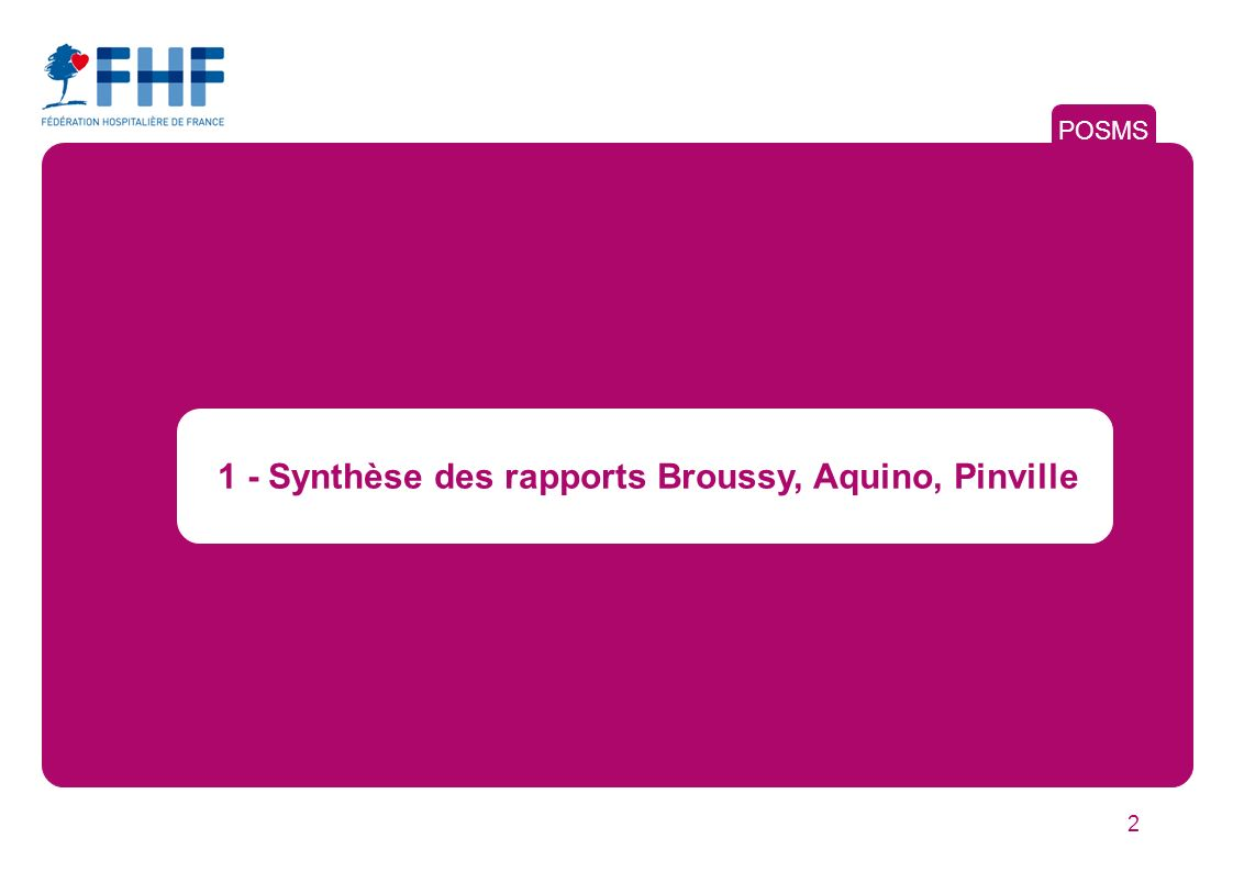 2 1 - Synthèse des rapports Broussy, Aquino, Pinville POSMS