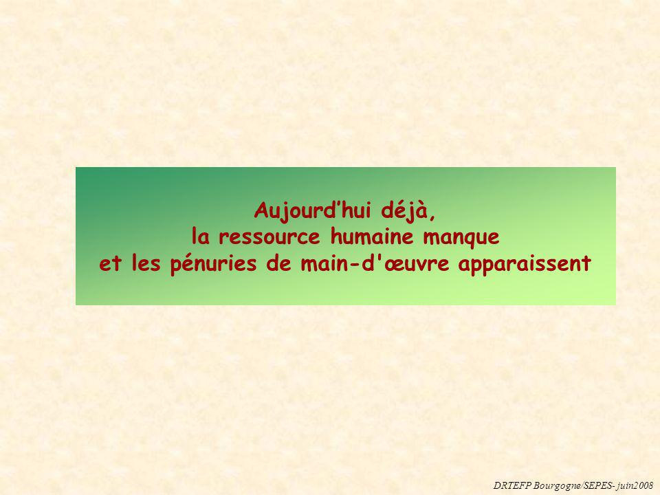 Aujourdhui déjà, la ressource humaine manque et les pénuries de main-d'œuvre apparaissent DRTEFP Bourgogne/SEPES- juin2008