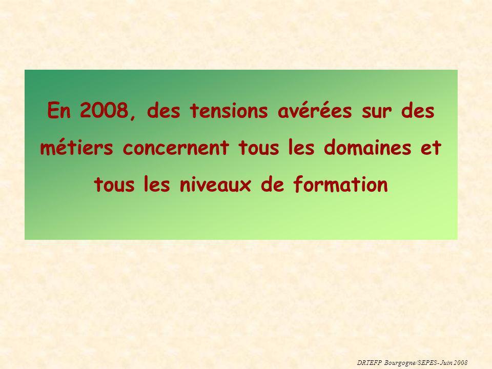 En 2008, des tensions avérées sur des métiers concernent tous les domaines et tous les niveaux de formation DRTEFP Bourgogne/SEPES- Juin 2008