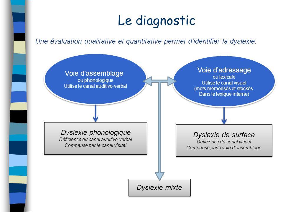 Le diagnostic Une évaluation qualitative et quantitative permet didentifier la dyslexie: Voie dassemblage ou phonologique Utilise le canal auditivo-ve