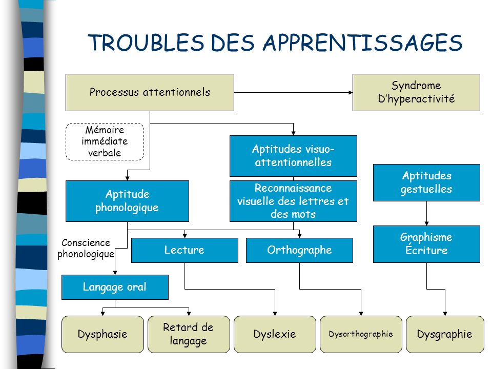 TROUBLES DES APPRENTISSAGES Processus attentionnels Syndrome Dhyperactivité Aptitudes gestuelles Graphisme Écriture Aptitudes visuo- attentionnelles R