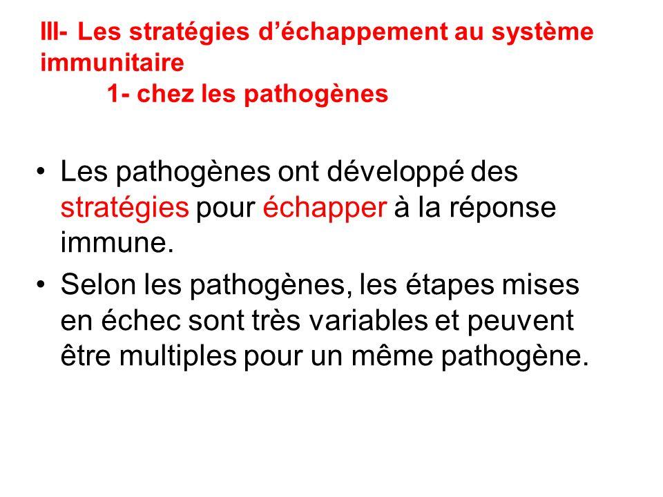 III- Les stratégies déchappement au système immunitaire 1- chez les pathogènes Les pathogènes ont développé des stratégies pour échapper à la réponse