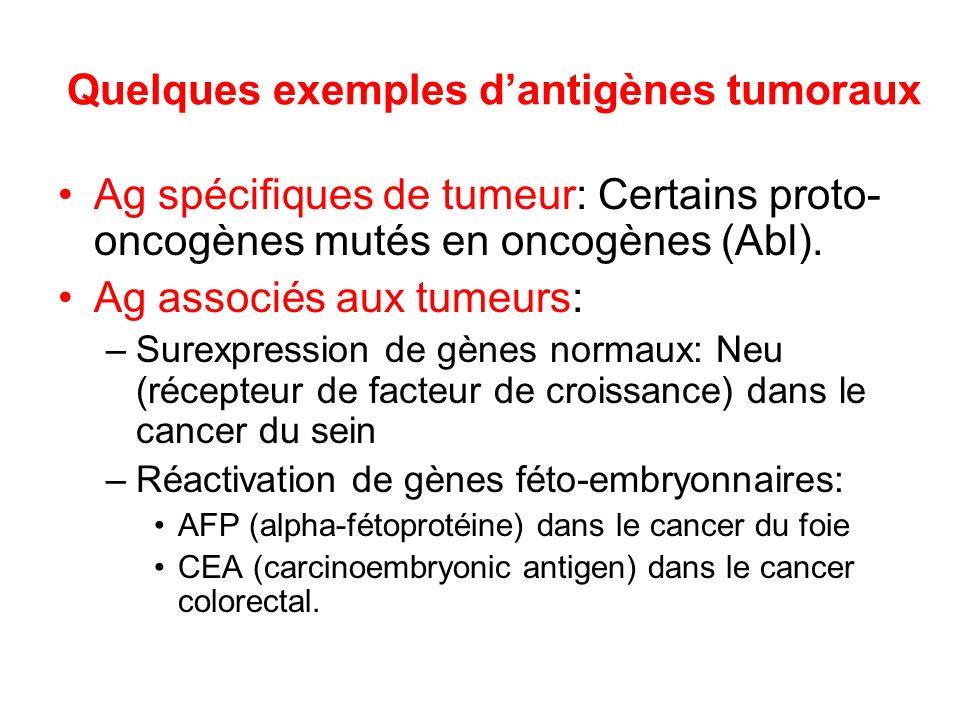 Quelques exemples dantigènes tumoraux Ag spécifiques de tumeur: Certains proto- oncogènes mutés en oncogènes (Abl). Ag associés aux tumeurs: –Surexpre
