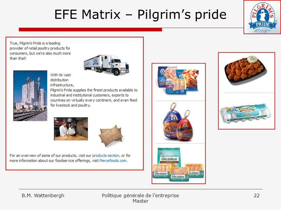 B.M. WattenberghPolitique générale de lentreprise Master 22 EFE Matrix – Pilgrims pride