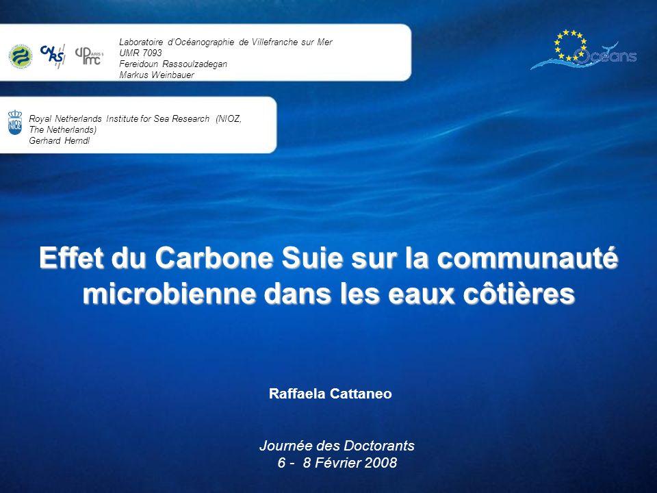 Effet du Carbone Suie sur la communauté microbienne dans les eaux côtières Raffaela Cattaneo Journée des Doctorants 6 - 8 Février 2008 Royal Netherlan