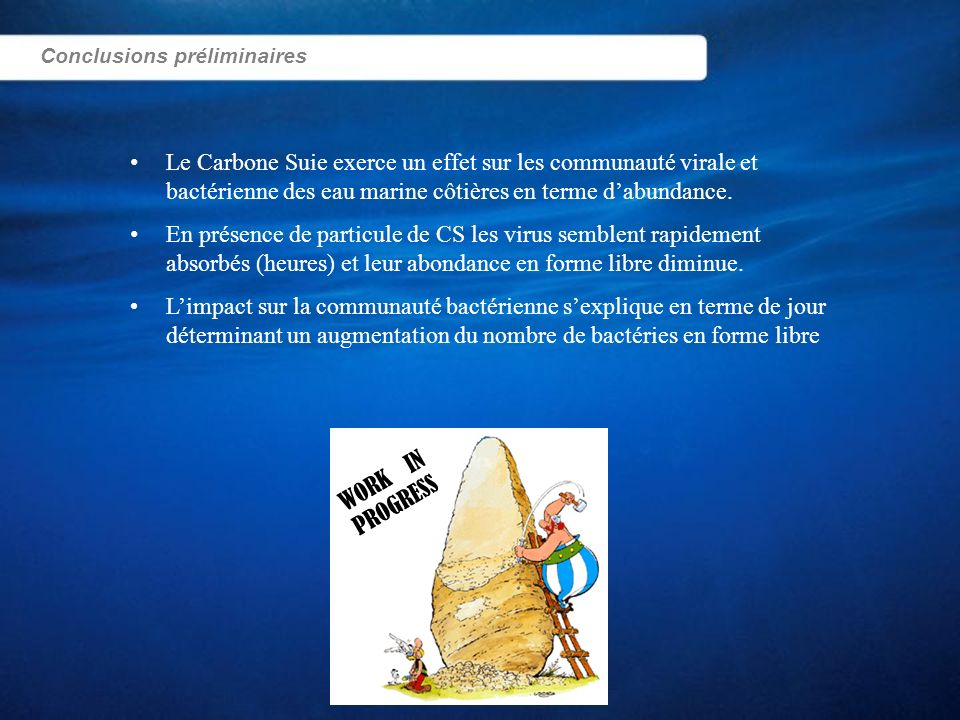 Conclusions préliminaires Le Carbone Suie exerce un effet sur les communauté virale et bactérienne des eau marine côtières en terme dabundance. En pré
