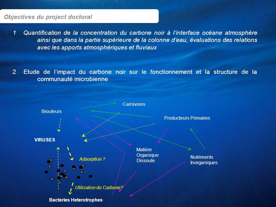 1 Objectives du project doctoral Carnivores Bacteries Heterotrophes Producteurs Primaires Brouteurs VIRUSES Matière Organique Dissoute Nutriments Inor