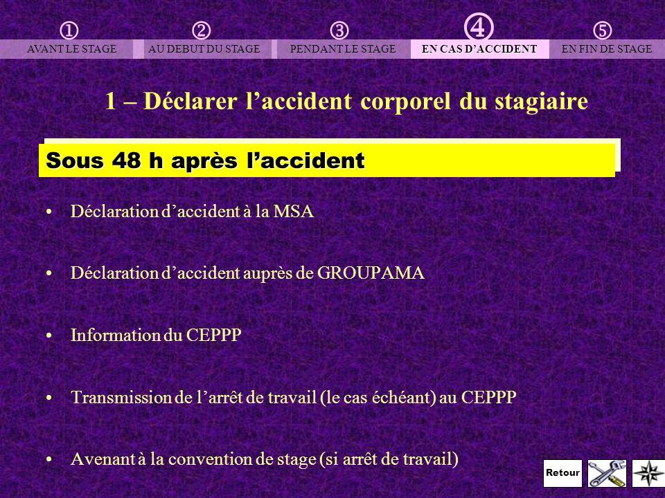 Retour 1 – Déclarer laccident corporel du stagiaire Déclaration daccident à la MSA Déclaration daccident auprès de GROUPAMA Information du CEPPP Trans