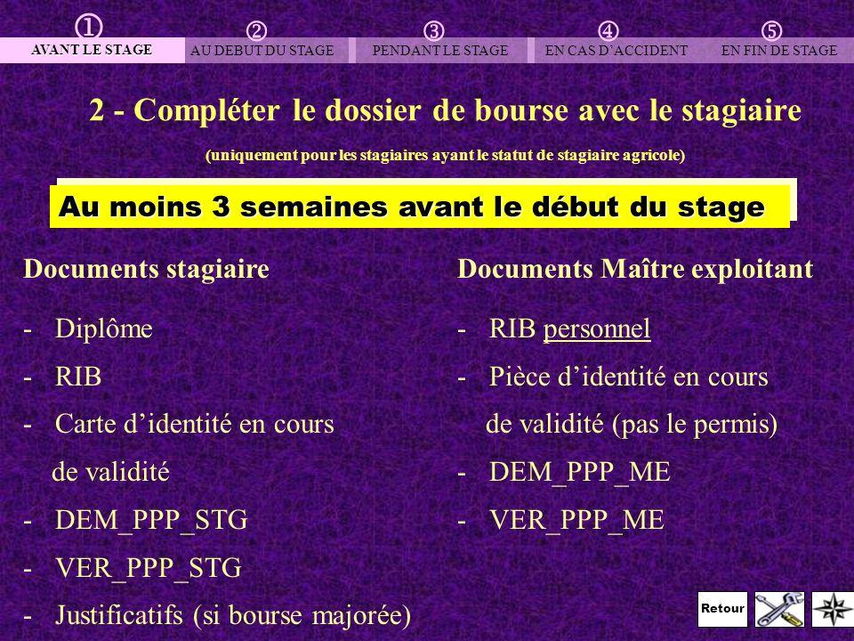 Retour 3 – Déclarer le stagiaire auprès de la MSA Documents à envoyer à la MSA -copie convention de stage (document 2-1-1) -Déclaration Unique dEmbauche Dans les 8 jours qui précèdent le début du stage AVANT LE STAGE AU DEBUT DU STAGEPENDANT LE STAGEEN CAS DACCIDENT EN FIN DE STAGE