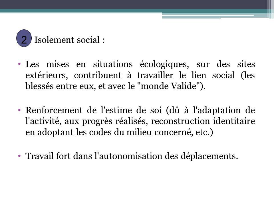Isolement social : Les mises en situations écologiques, sur des sites extérieurs, contribuent à travailler le lien social (les blessés entre eux, et a