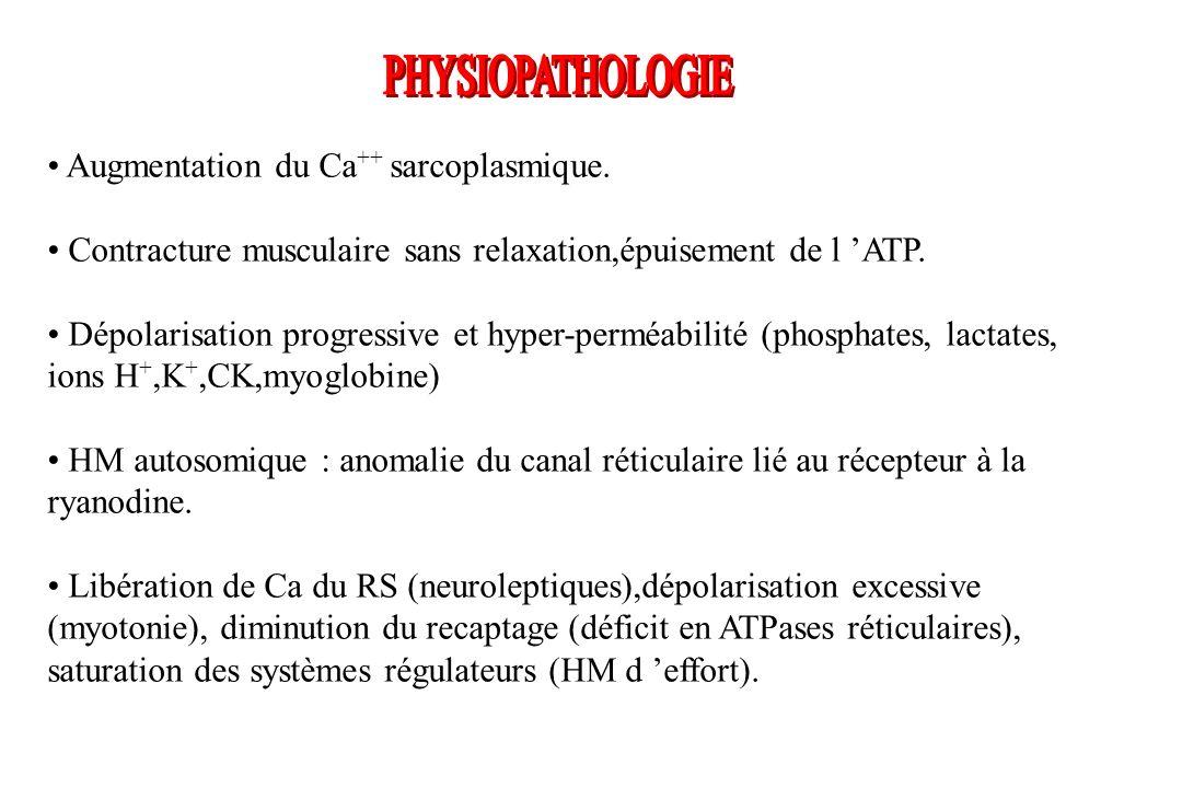 Augmentation du Ca ++ sarcoplasmique. Contracture musculaire sans relaxation,épuisement de l ATP. Dépolarisation progressive et hyper-perméabilité (ph