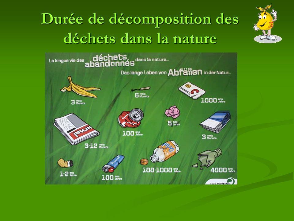 Durée de décomposition des déchets dans la nature
