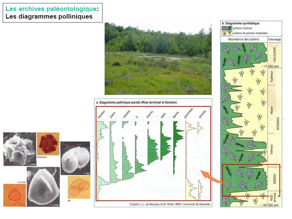 Les archives paléontologique: Les diagrammes polliniques