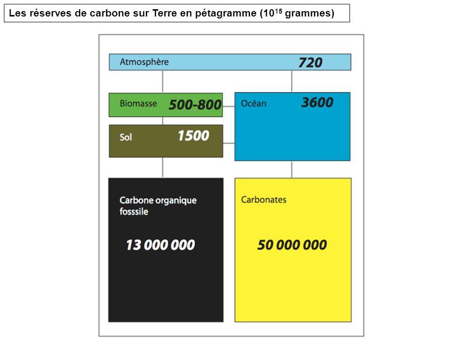 Les réserves de carbone sur Terre en pétagramme (10 15 grammes)