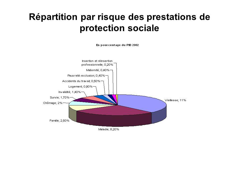 Répartition par risque des prestations de protection sociale