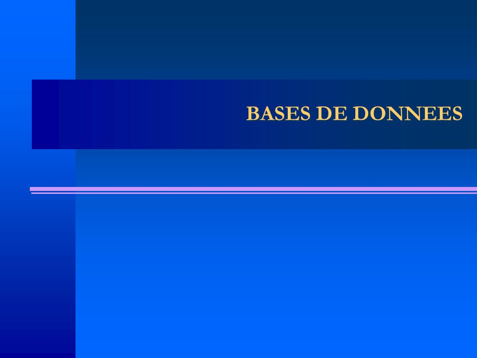 BASES DE DONNEES