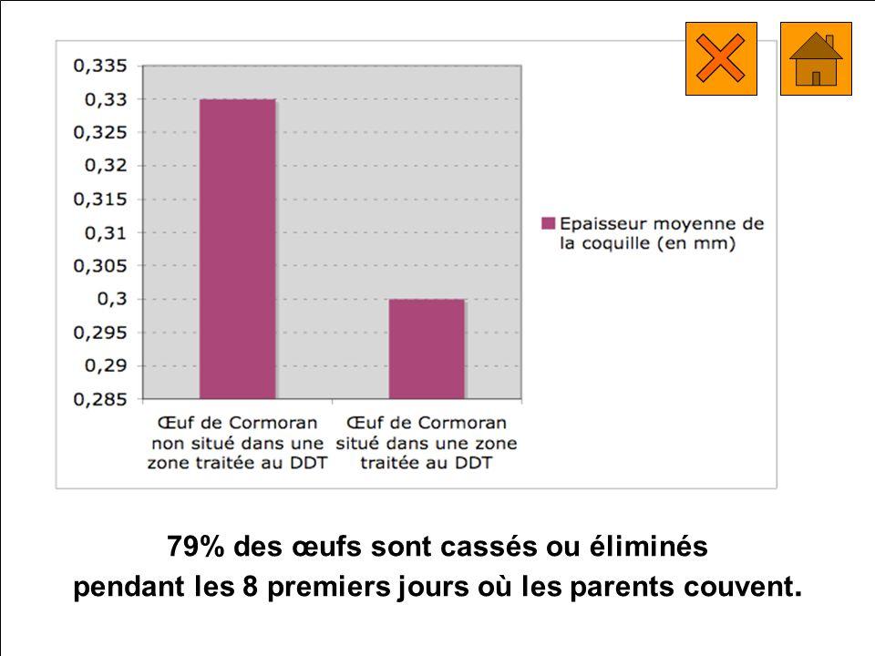 79% des œufs sont cassés ou éliminés pendant les 8 premiers jours où les parents couvent.