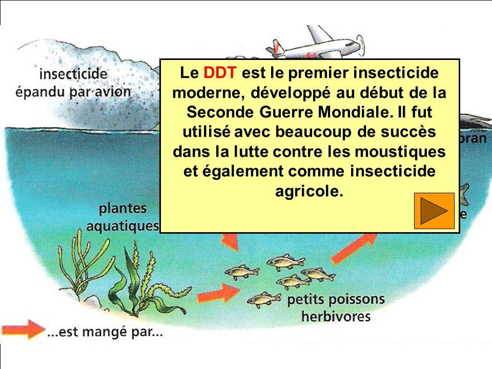 Le DDT est le premier insecticide moderne, développé au début de la Seconde Guerre Mondiale. Il fut utilisé avec beaucoup de succès dans la lutte cont