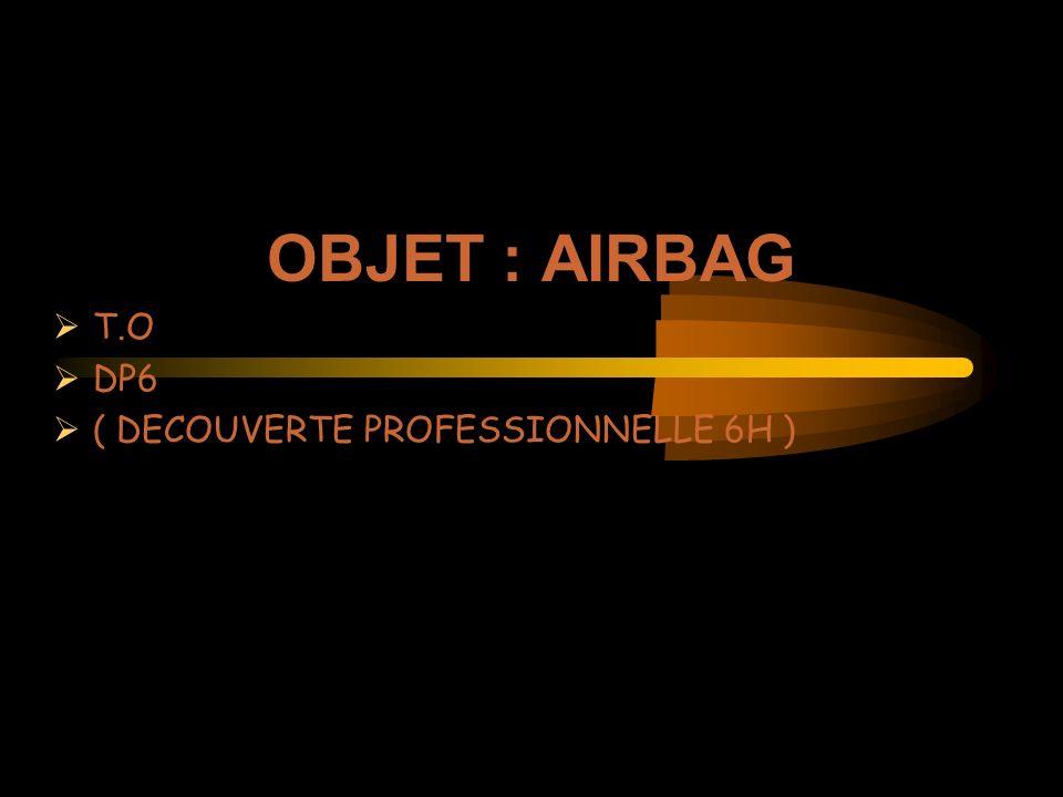 OBJET : AIRBAG T.O DP6 ( DECOUVERTE PROFESSIONNELLE 6H )