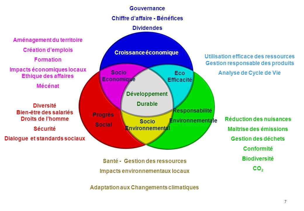 Développement Durable Croissance économique Socio Economique Eco Efficacité Progrès Social Responsabilité Environnementale Socio Environnemental Gouve