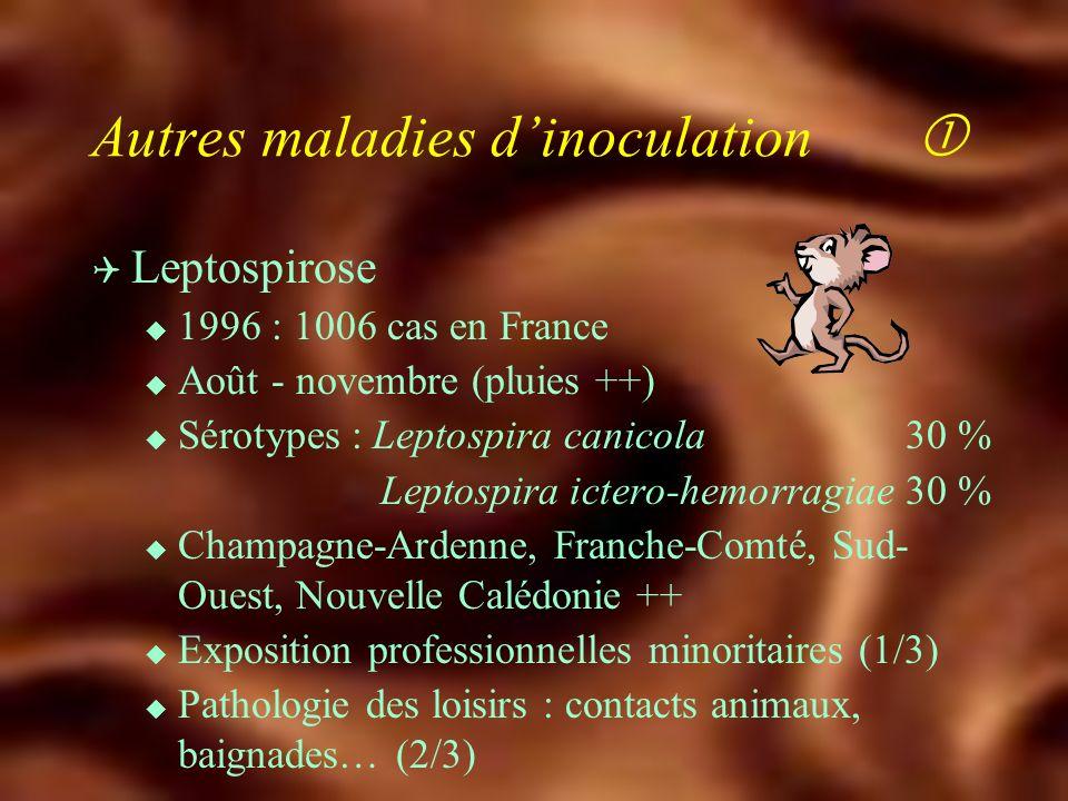 Q Chorioméningite lymphocytaire u Contact avec hamster Q Encéphalite à Herpes simiae B u Morsure macaque ( 30 cas) u Méningoencéphalite Zovirax® IV Maladies dinoculation