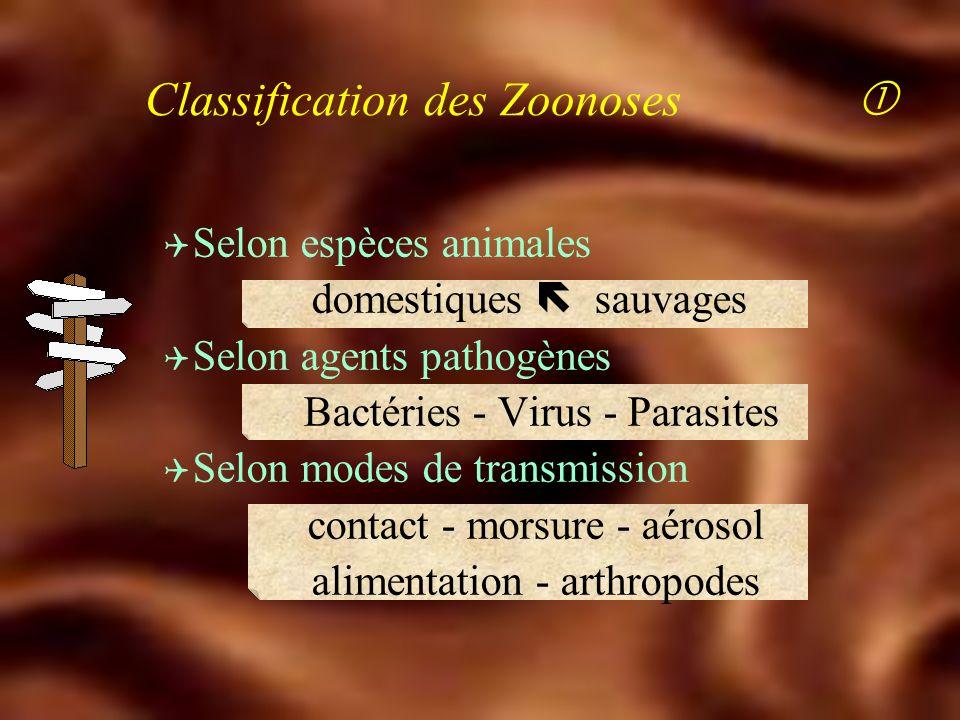 Définition des Zoonoses Q Maladies transmissibles Q De l'animal à l'homme Réservoir de germes Cycle de la maladie Homme accident dans le cycle ! anima