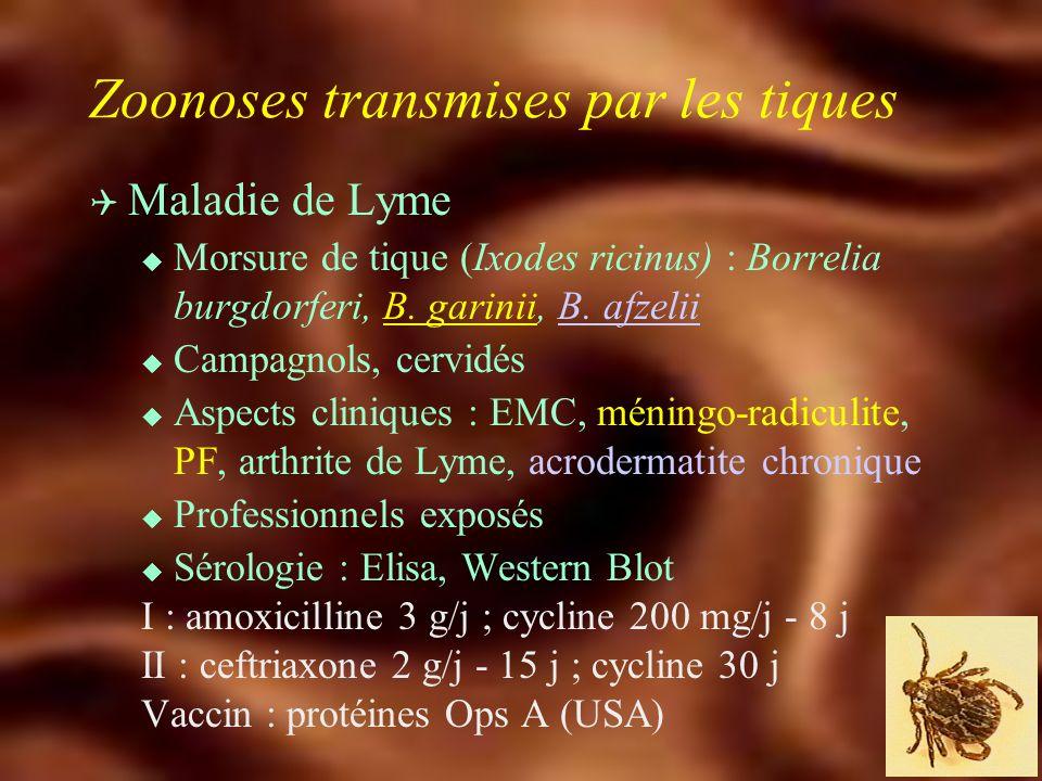 Infections transmises par aérosol Q Cryptococcose u C. neoformans u Déjections pigeons u VIH, Hodgkin u M. encéphalite, pneumopathie Ampho B, Trifluca