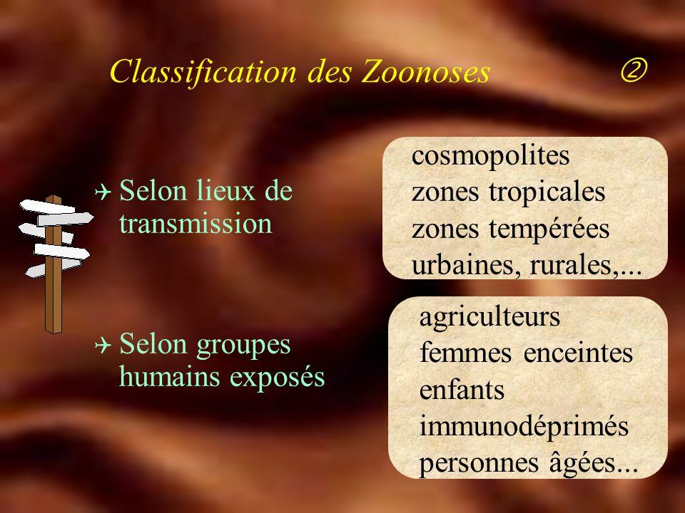 Classification des Zoonoses Q Selon espèces animales domestiques sauvages Q Selon agents pathogènes Bactéries - Virus - Parasites Q Selon modes de transmission contact - morsure - aérosol alimentation - arthropodes