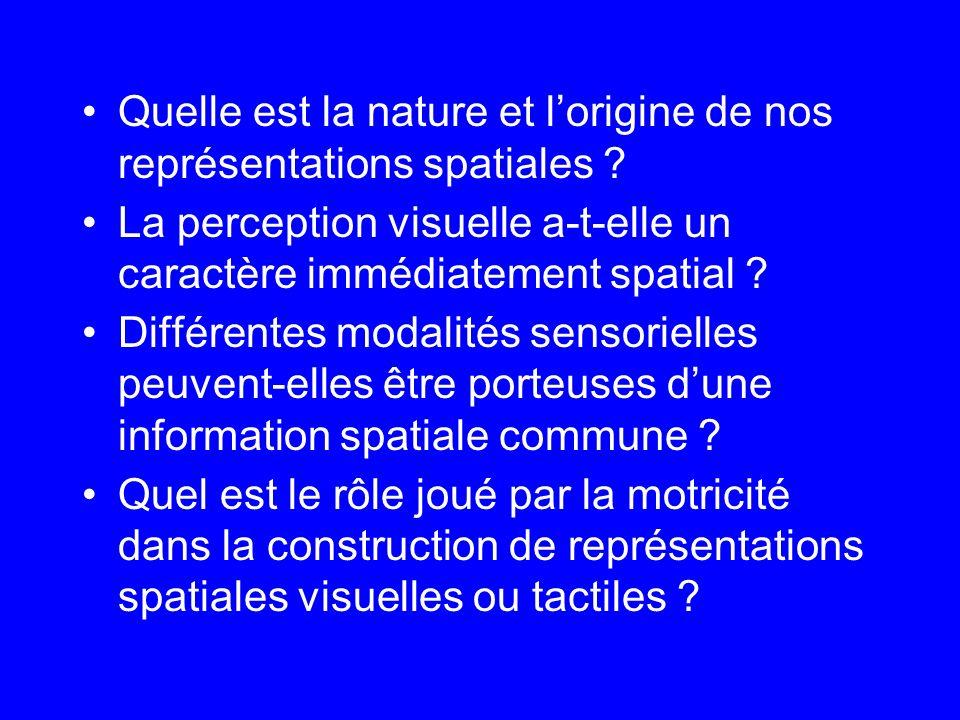 Quelle est la nature et lorigine de nos représentations spatiales ? La perception visuelle a-t-elle un caractère immédiatement spatial ? Différentes m