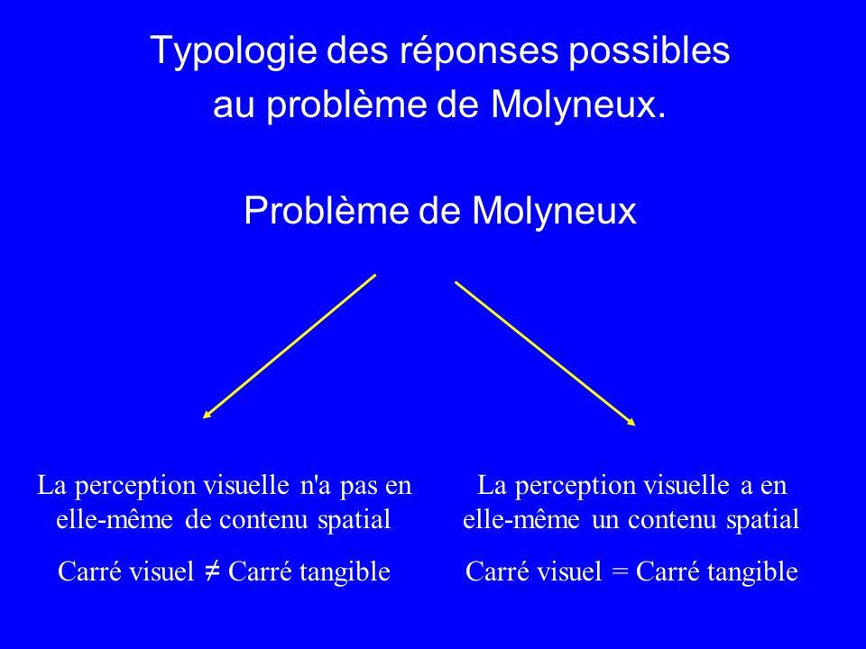 Typologie des réponses possibles au problème de Molyneux. Problème de Molyneux La perception visuelle a en elle-même un contenu spatial Carré visuel =