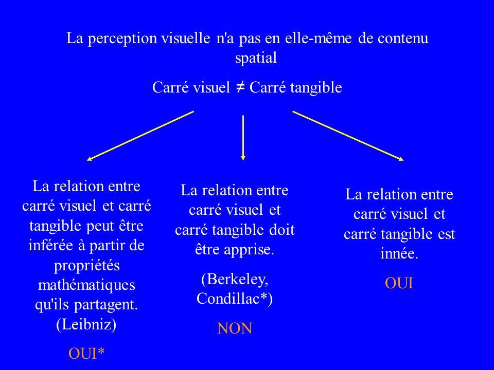 La perception visuelle n'a pas en elle-même de contenu spatial Carré visuel Carré tangible La relation entre carré visuel et carré tangible peut être