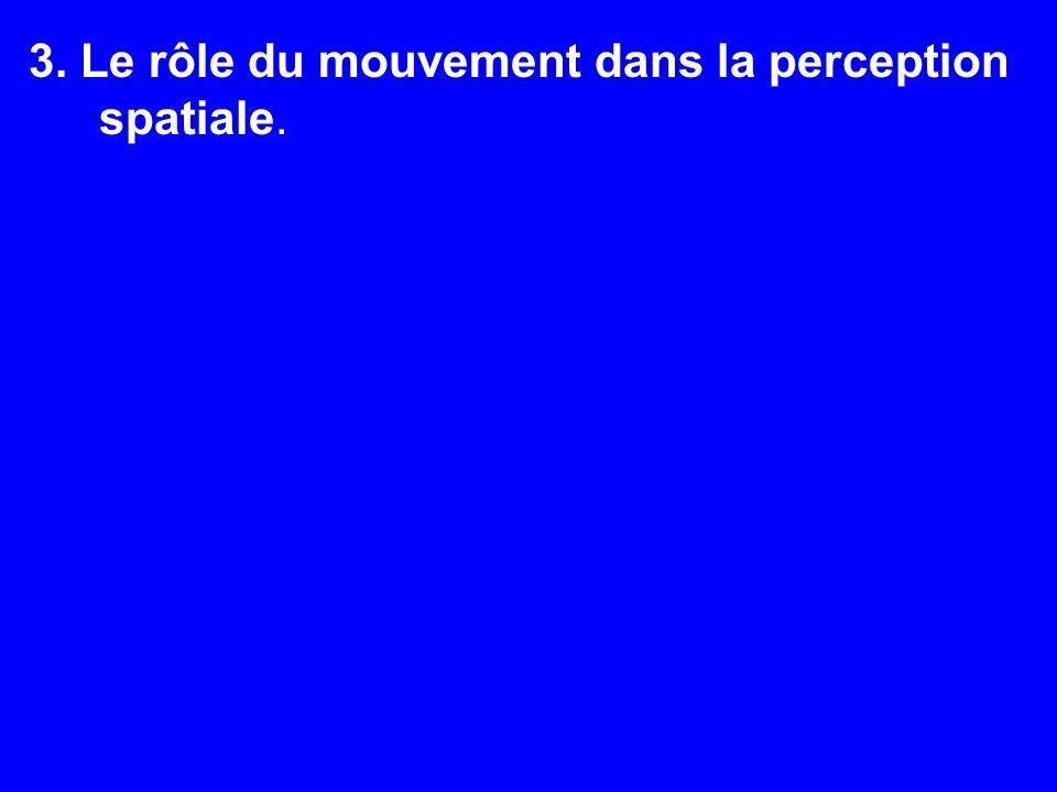 3. Le rôle du mouvement dans la perception spatiale.