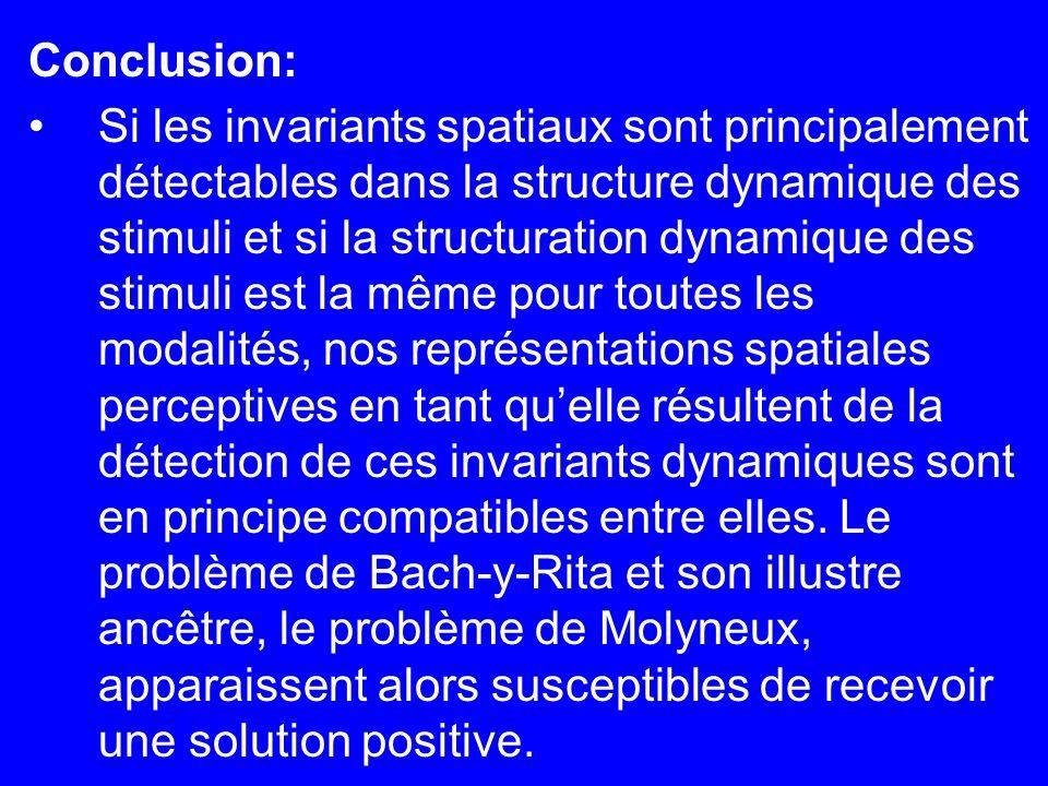 Conclusion: Si les invariants spatiaux sont principalement détectables dans la structure dynamique des stimuli et si la structuration dynamique des st