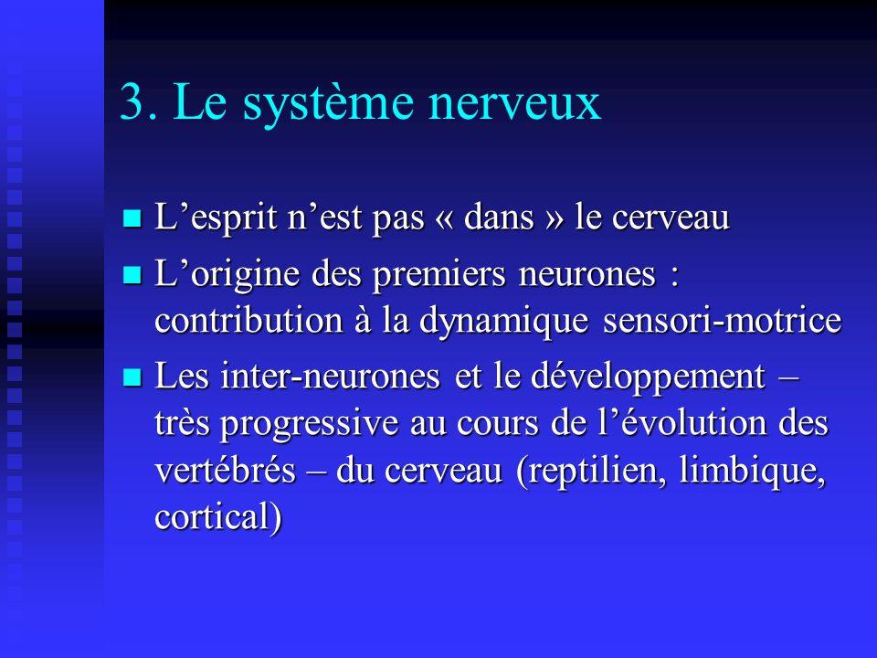 3. Le système nerveux Lesprit nest pas « dans » le cerveau Lesprit nest pas « dans » le cerveau Lorigine des premiers neurones : contribution à la dyn