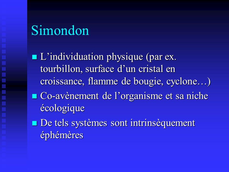 Simondon Lindividuation physique (par ex. tourbillon, surface dun cristal en croissance, flamme de bougie, cyclone…) Lindividuation physique (par ex.