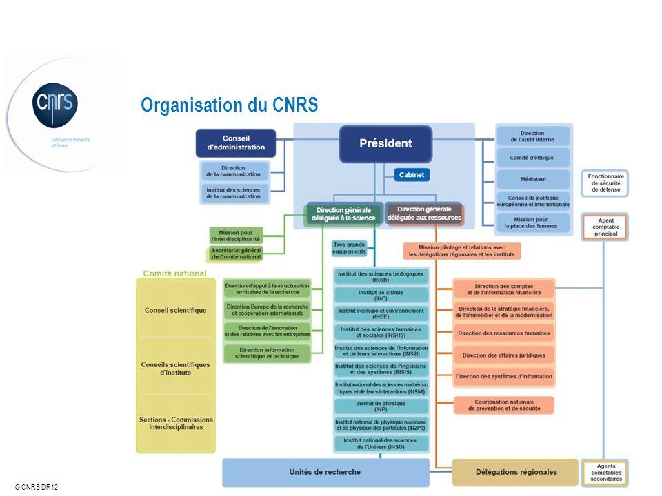 © CNRS DR12 Service de prévention et de sécurité : SPS Le service de prévention et de sécurité, dirigé par lingénieur régional de prévention et de sécurité (IRPS), est en charge de la politique nationale de prévention et de sécurité du CNRS à légard de son personnel et de ses unités.