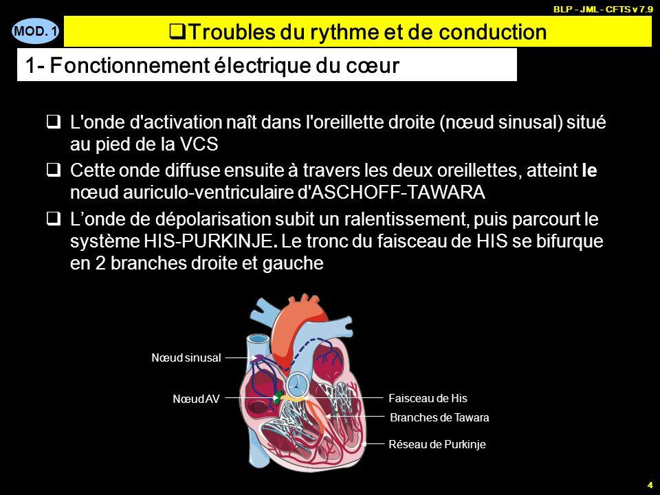 MOD. 1 BLP - JML - CFTS v 7.9 3 Troubles du rythme et de conduction 1- Fonctionnement électrique du cœur Nœud sinusal Nœud AV Faisceau de His Branches