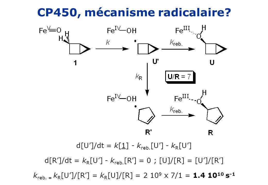CP450, mécanisme radicalaire? d[U]/dt = k[1] - k reb. [U] - k R [U] d[R]/dt = k R [U] - k reb. [R] = 0 ; [U]/[R] = [U]/[R] k reb. = k R [U]/[R] = k R
