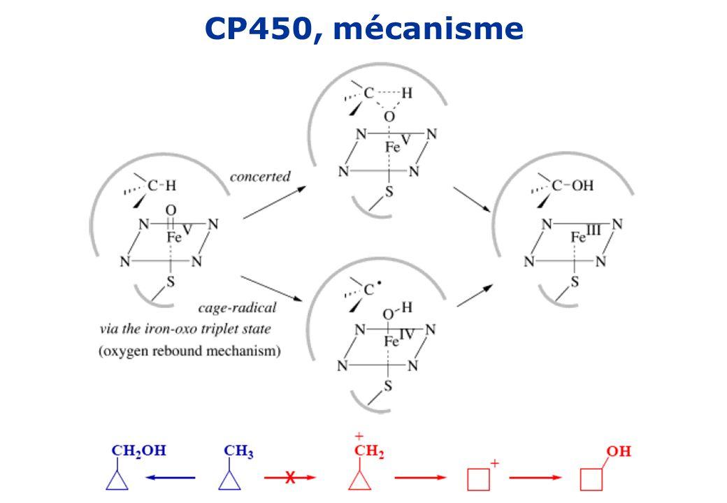 CP450, mécanisme