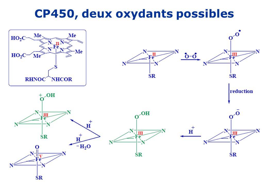 CP450, deux oxydants possibles