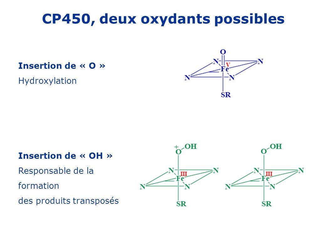 CP450, deux oxydants possibles Insertion de « O » Hydroxylation Insertion de « OH » Responsable de la formation des produits transposés
